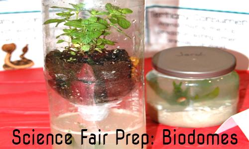biodome experiment